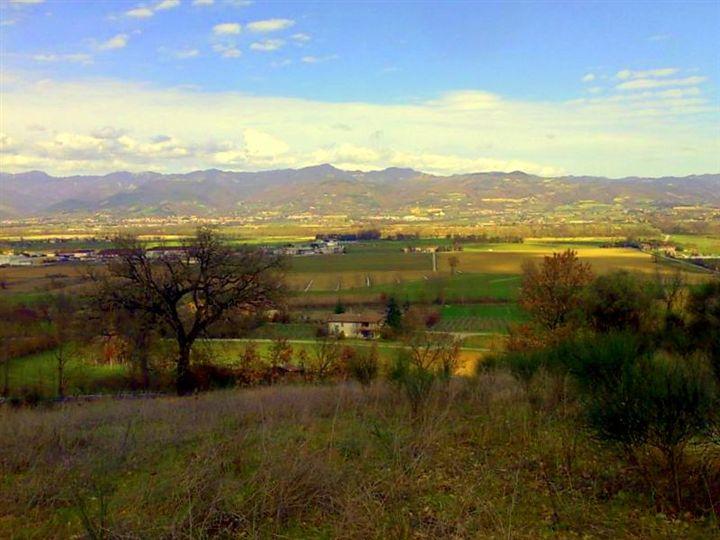 Terreno Edificabile Residenziale in vendita a Citerna, 9999 locali, prezzo € 295.000 | Cambio Casa.it