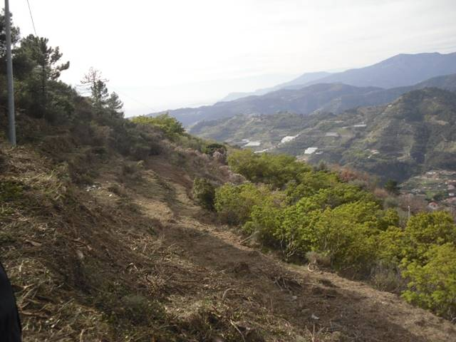 Terreno Edificabile Residenziale in vendita a Soldano, 9999 locali, prezzo € 235.000 | Cambio Casa.it