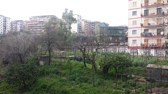 Quadrilocale in Via San Giacomo Dei Capri 65 Bis, Arenella, Napoli