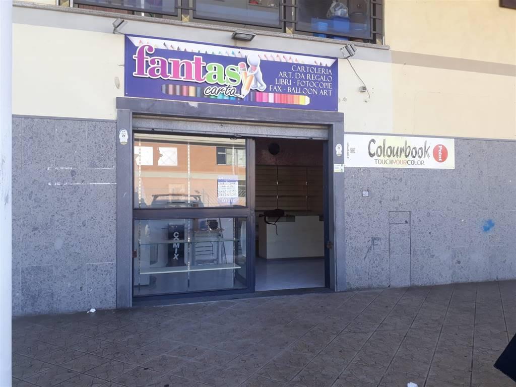 negozio  in Affitto a Mugnano Di Napoli