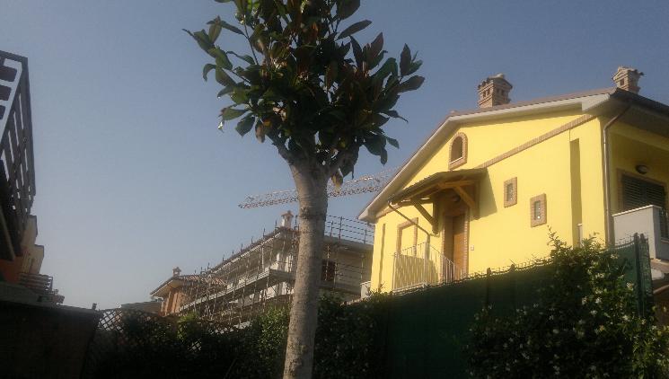 Soluzione Indipendente in vendita a Castelbellino, 4 locali, zona Zona: Castelbellino Stazione, prezzo € 230.000 | Cambio Casa.it