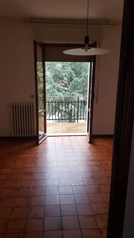 Appartamento in affitto a Castelbellino, 5 locali, zona Zona: Castelbellino Stazione, prezzo € 400 | Cambio Casa.it