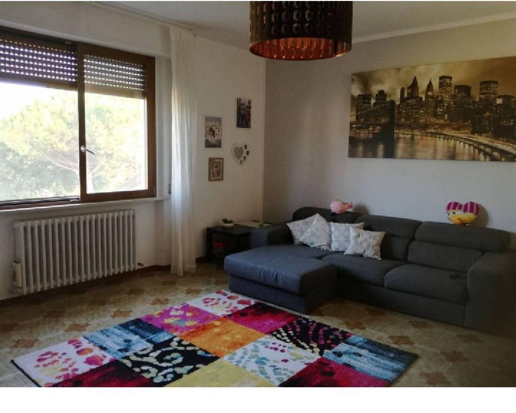 Appartamento  in Affitto a Castelplanio