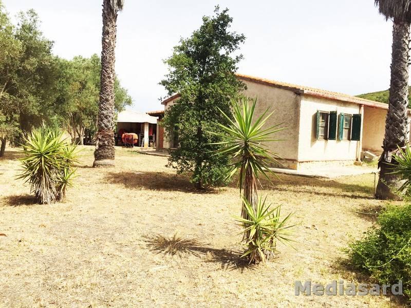 Villa Bifamiliare in vendita a Alghero, 3 locali, zona Zona: Santa Maria la Palma, prezzo € 65.000 | Cambio Casa.it