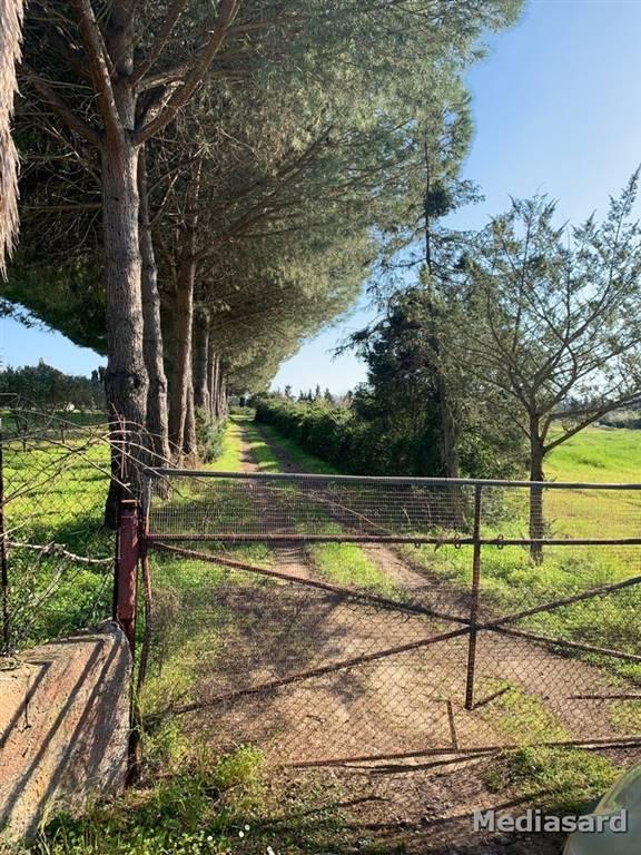 terreno edificabile  in Vendita a Alghero
