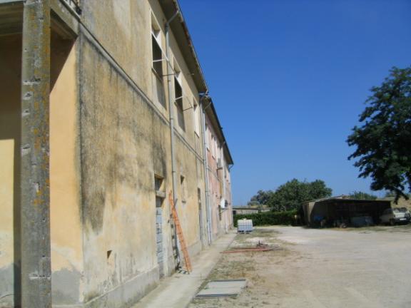 Azienda Agricola in Vendita a Campiglia Marittima