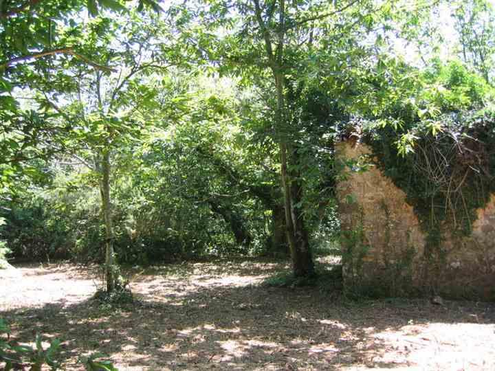terreno in Vendita Massa Marittima in provincia di Grosseto