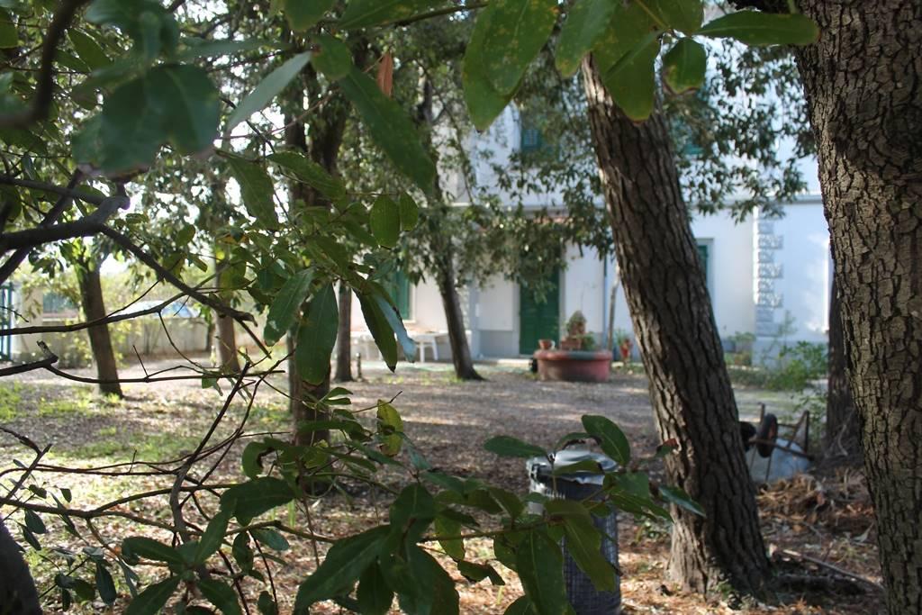 Livorno annunci immobiliari di case e appartamenti nella for Case livorno