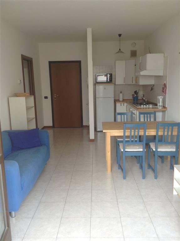 MILANO, adiacenze BOCCONI, Affittiamo, appartamento di 55 Mq, ca. con terrazza affacciata su una piacevole area verdeggiante condominiale.