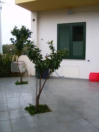 Soluzione Indipendente in affitto a Marsala, 4 locali, zona Località: MARE, prezzo € 350 | Cambio Casa.it