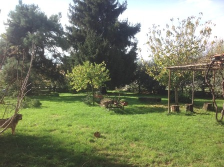Soluzione Indipendente in vendita a Borgo San Lorenzo, 9 locali, zona Località: IMMEDIATE VICINANZE, prezzo € 600.000 | Cambio Casa.it