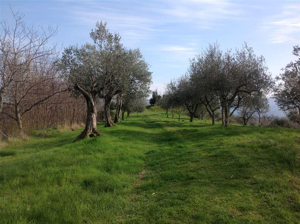 Soluzione Indipendente in vendita a Borgo San Lorenzo, 9 locali, zona Località: IMMEDIATE VICINANZE, prezzo € 499.000 | Cambio Casa.it