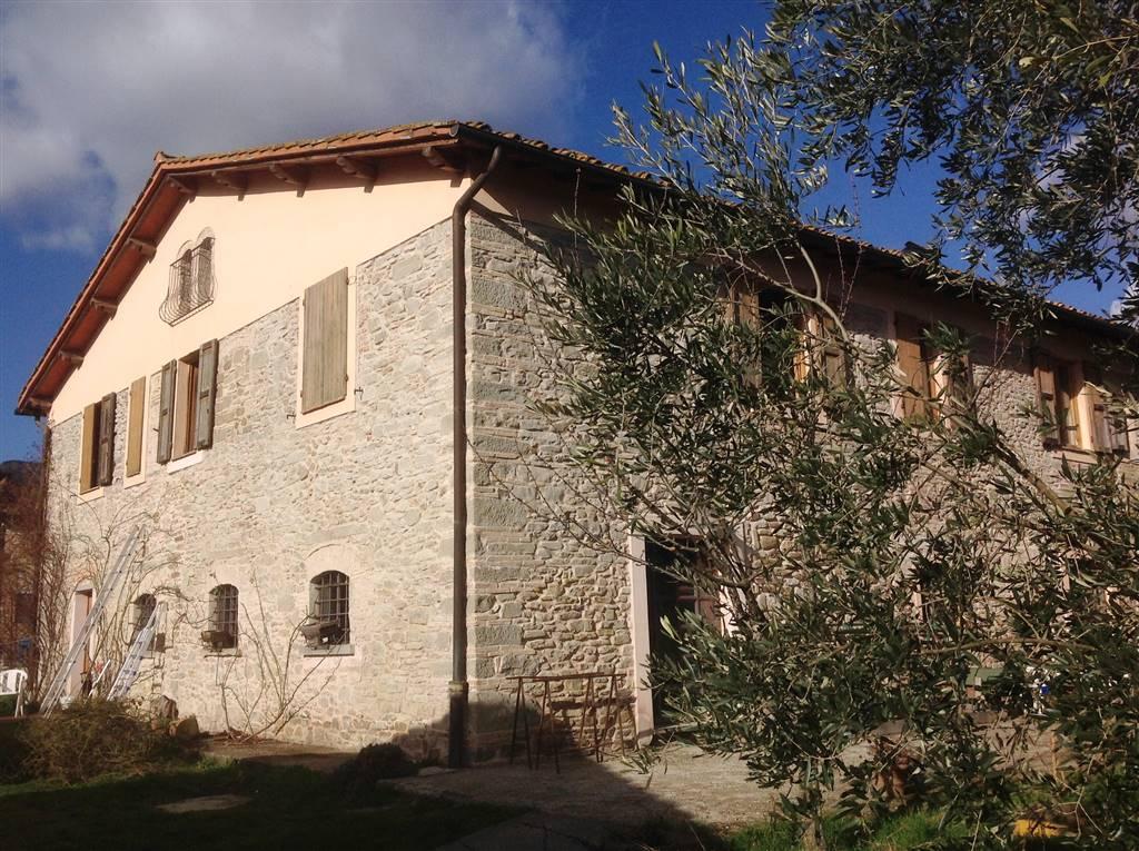 Azienda Agricola in Vendita a Borgo San Lorenzo