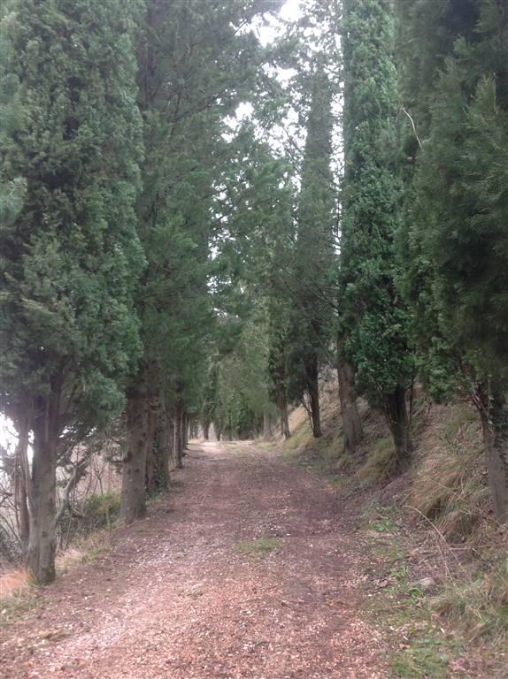 Soluzione Indipendente in vendita a Vicchio, 10 locali, zona Località: VILLORE, prezzo € 260.000 | Cambio Casa.it