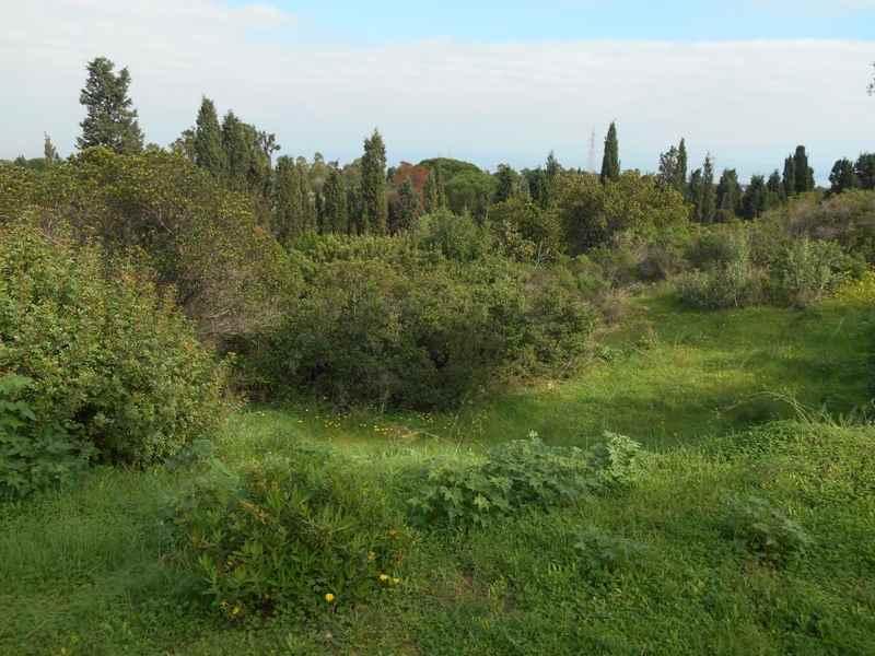 Terreno Edificabile Residenziale in vendita a Capoterra, 9999 locali, zona Località: POGGIO DEI PINI, prezzo € 95.000 | CambioCasa.it
