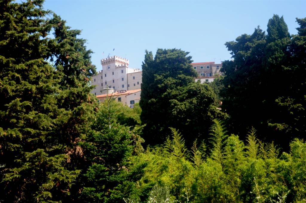 Villa ROSIGNANO MARITTIMO - Foto 9