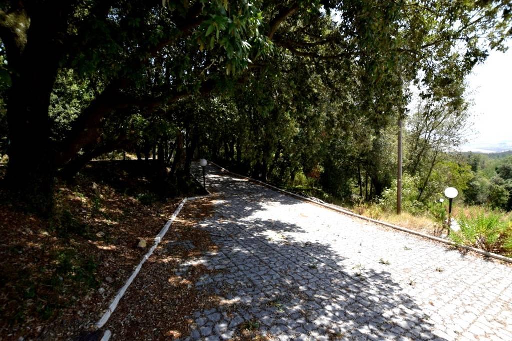 Villa GABBRO - Foto 6