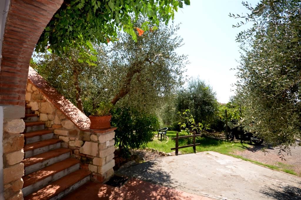 Villa ROSIGNANO MARITTIMO - Foto 16