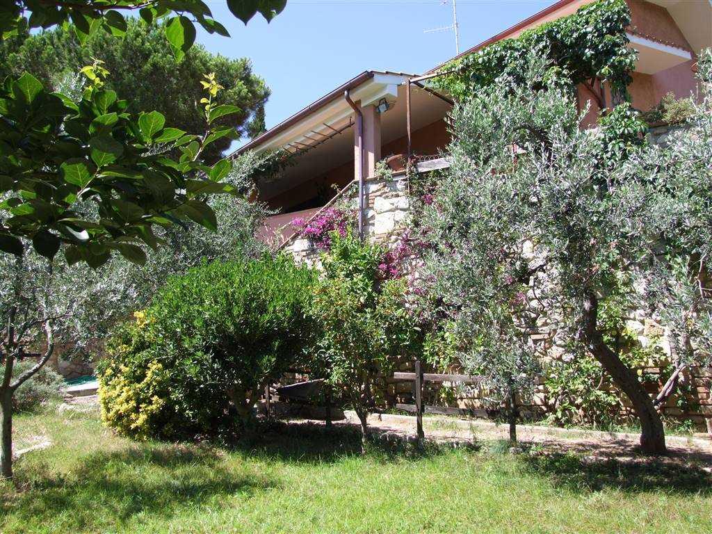 Villa ROSIGNANO MARITTIMO - Foto 15