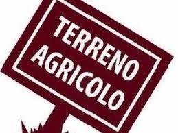 Terreno agricolo LIMONCINO - Foto 1