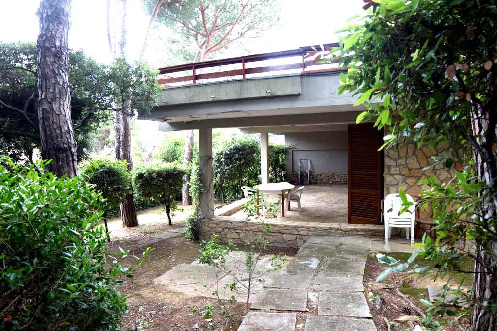 Appartamento indipendente QUERCIANELLA € 480.000