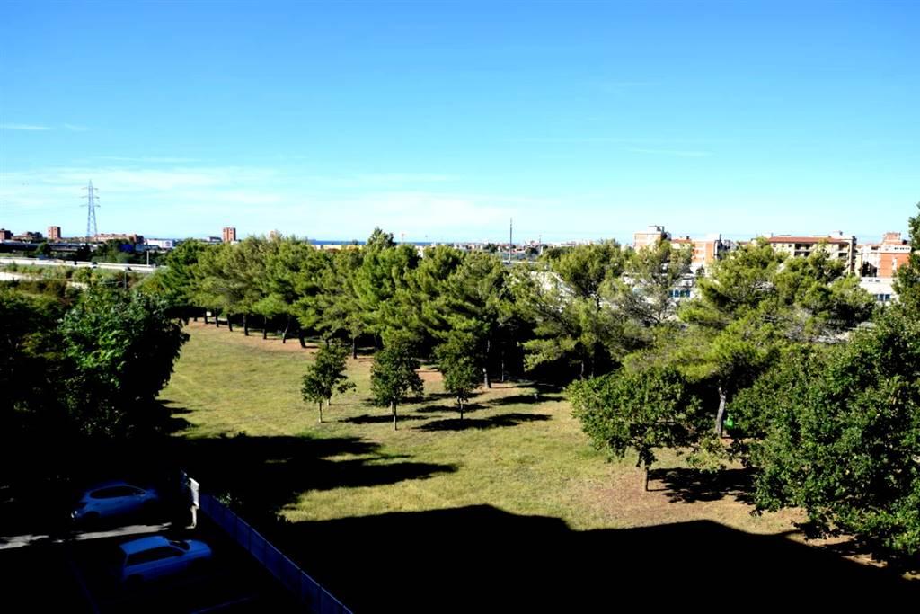 Appartamento SALVIANO - Foto 13