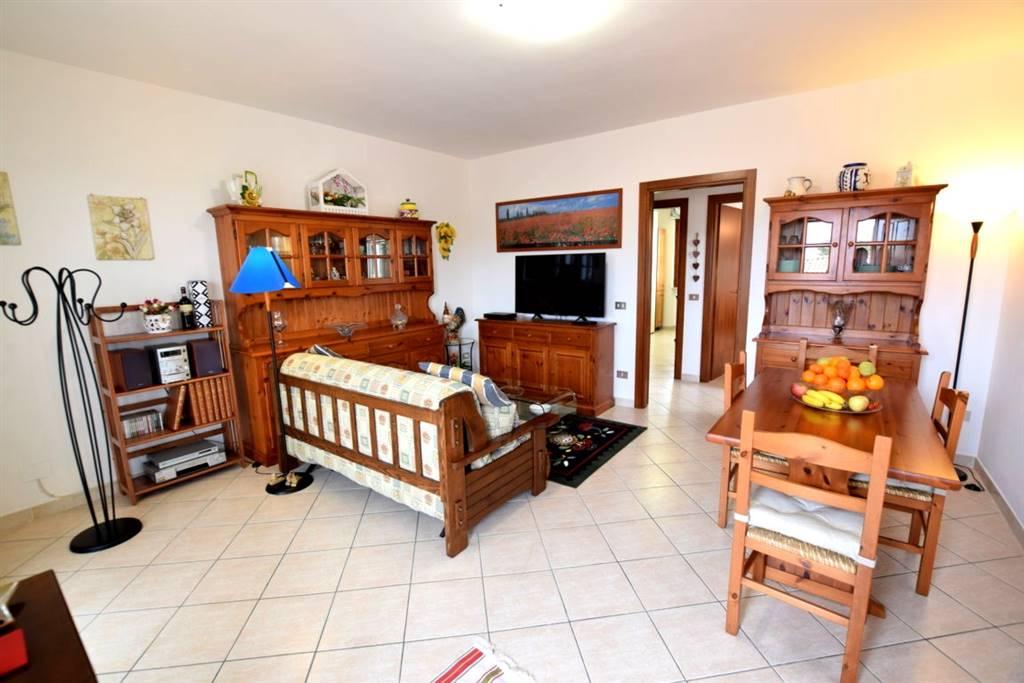 Appartamento in Vendita a Collesalvetti: 3 locali, 80 mq