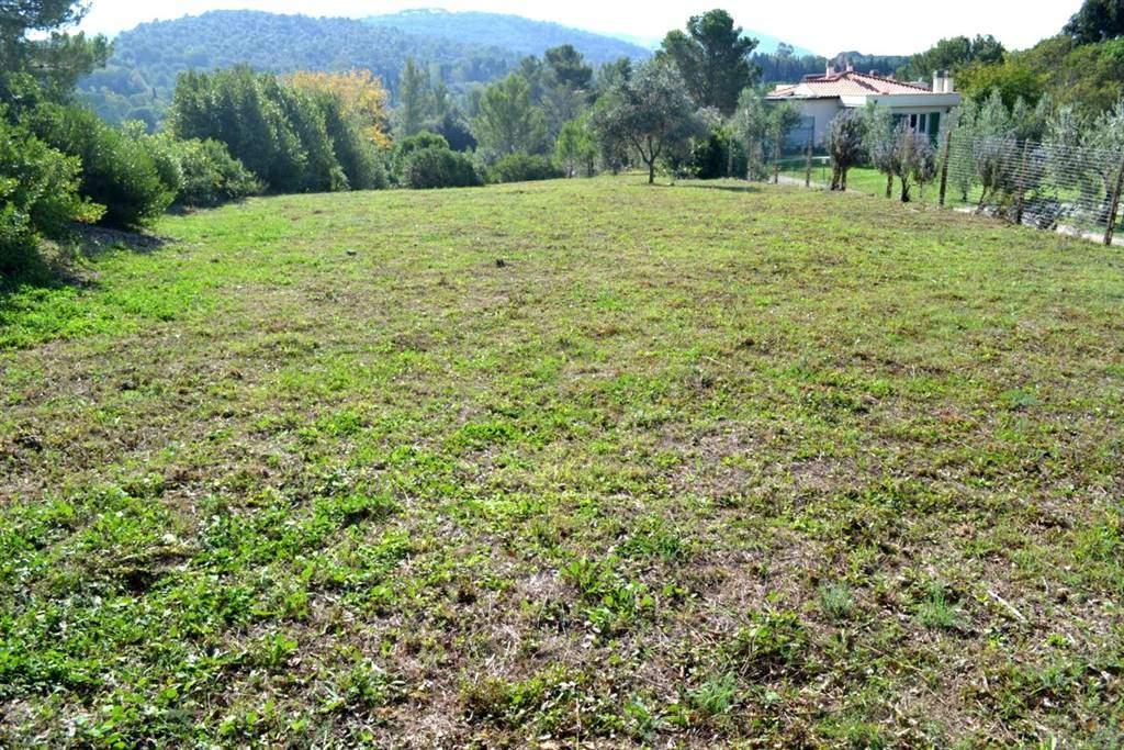 Terreno agricolo VILLA CORRIDI - Foto 3