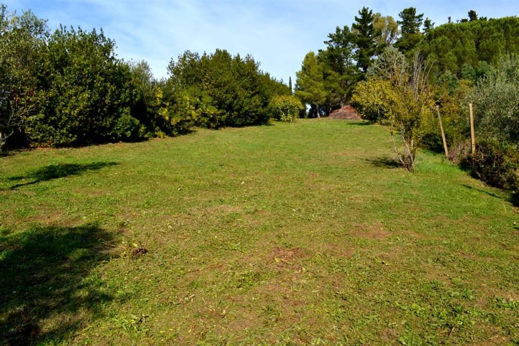 Terreno agricolo VILLA CORRIDI - Foto 14
