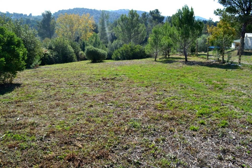 Terreno agricolo VILLA CORRIDI - Foto 4