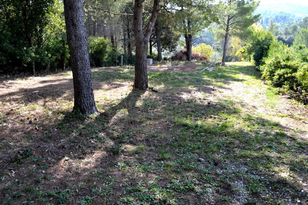 Terreno agricolo VILLA CORRIDI - Foto 19