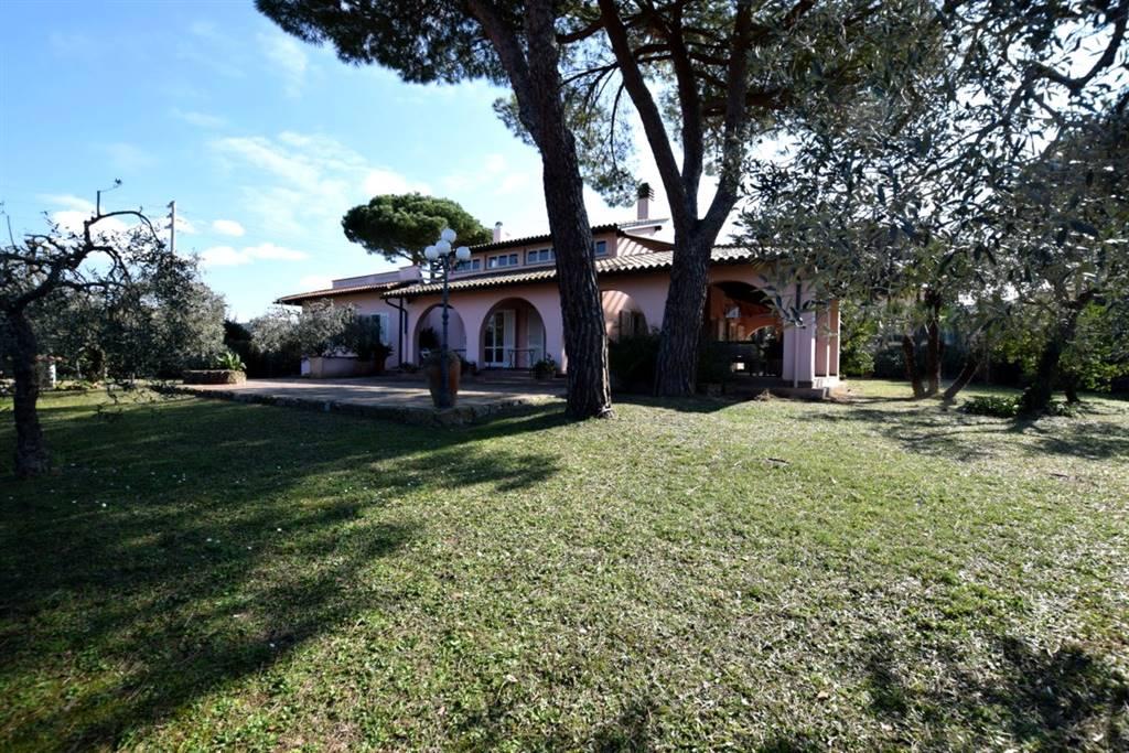 Villa in Vendita a Livorno: 5 locali, 300 mq