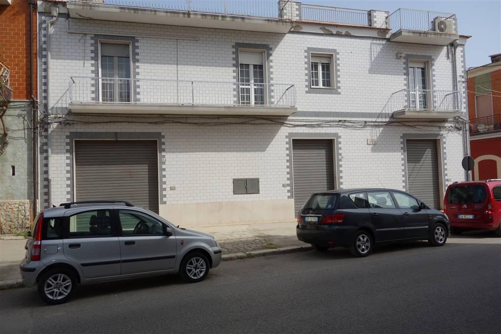 Immobile Commerciale in vendita a San Severo, 2 locali, prezzo € 450.000 | CambioCasa.it