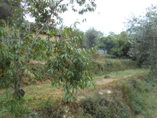 Case quiliano compro casa quiliano in vendita e affitto - Diritto di passaggio su terreno agricolo ...