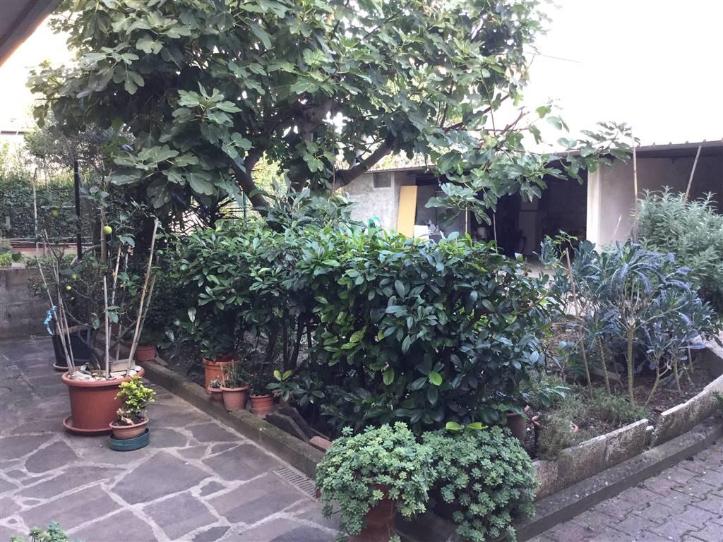 Casa in vendita e affitto in toscana su agestacase.it
