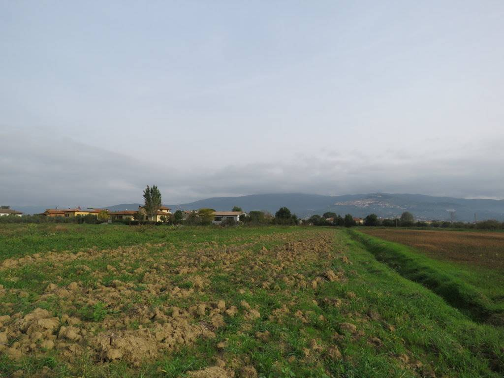 terreno edificabile  in Vendita a Cortona