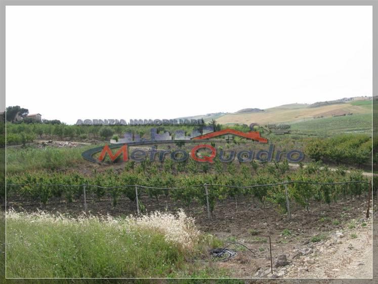 Terreno Agricolo in vendita a Canicattì, 9999 locali, zona Località: D 6 ZONA USCITA DELIA, prezzo € 60.000 | Cambio Casa.it