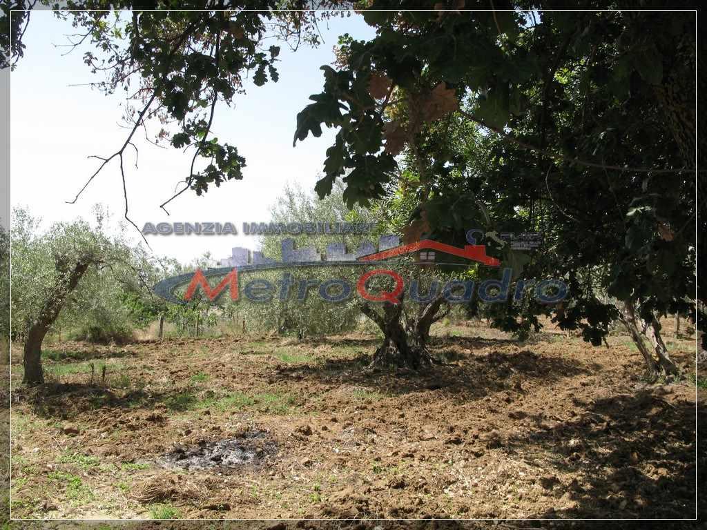Terreno Agricolo in vendita a Canicattì, 9999 locali, zona Località: ZONA C.DA RINAZZI, prezzo € 35.000 | Cambio Casa.it