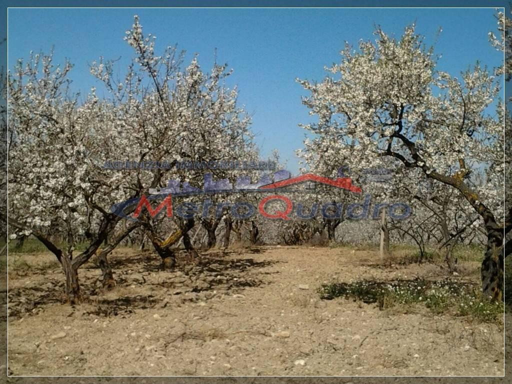 agriturismo-azienda agricola Bilocale in Vendita a Castrofilippo