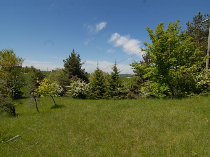 Case murazzano compro casa murazzano in vendita e affitto - Diritto di passaggio su terreno agricolo ...