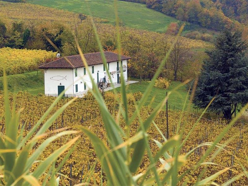 Casa Vendita Santo Stefano Belbo