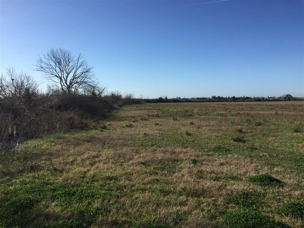 Terreni agricoli grosseto in vendita e in affitto cerco - Diritto di passaggio su terreno agricolo ...