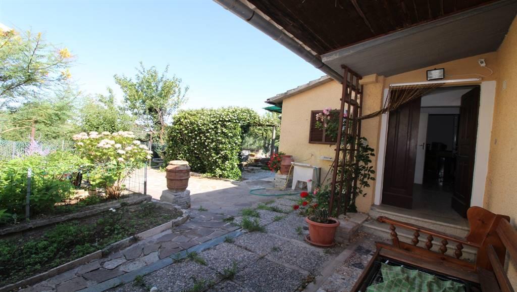 Soluzione Indipendente in affitto a Scansano, 3 locali, zona Zona: Pancole, prezzo € 50 | Cambio Casa.it