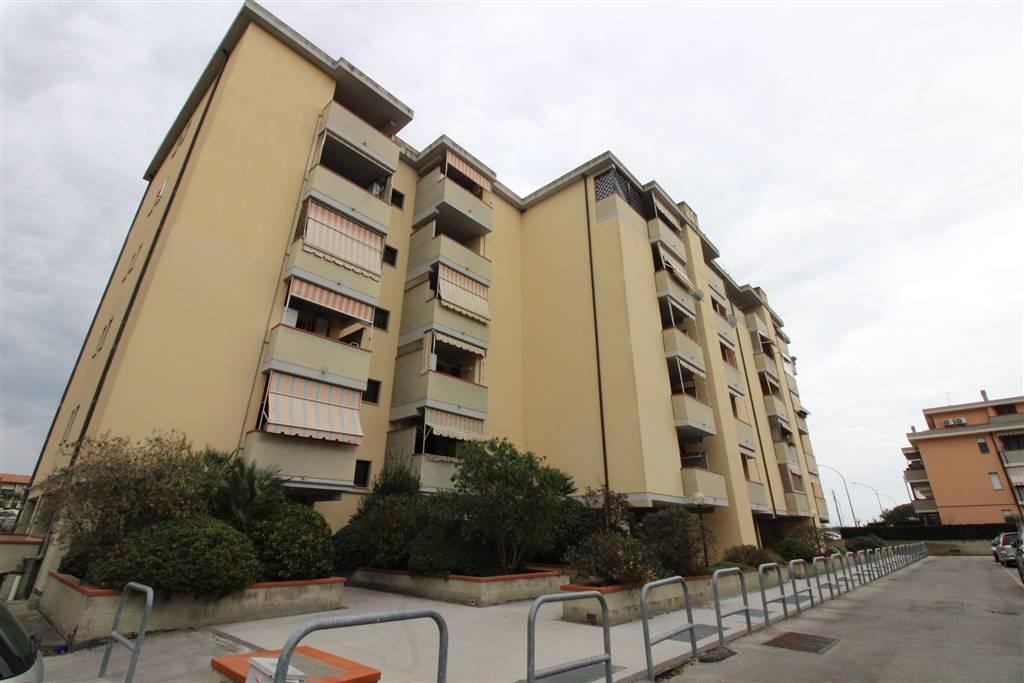 Affitto appartamento grosseto cerco appartamenti in for Cerco appartamento in affitto