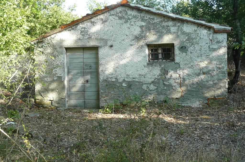 Altro in vendita a Roccalbegna, 1 locali, zona Zona: Vallerona, prezzo € 10.000 | CambioCasa.it