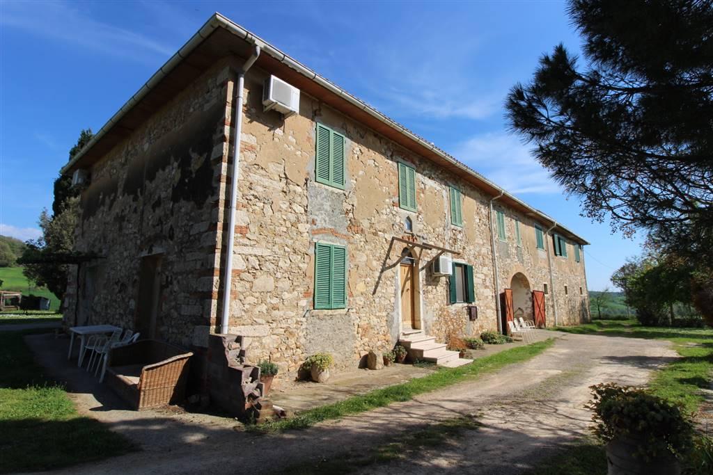agriturismo-azienda agricola Vendita Magliano In Toscana
