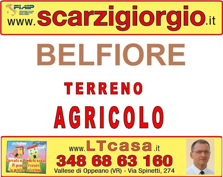 Terreno Agricolo in vendita a Belfiore, 9999 locali, prezzo € 299.000 | Cambio Casa.it