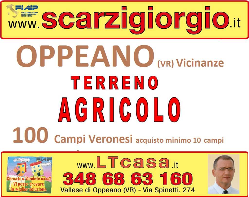 Terreno Agricolo in vendita a Oppeano, 9999 locali, prezzo € 15.000 | Cambio Casa.it