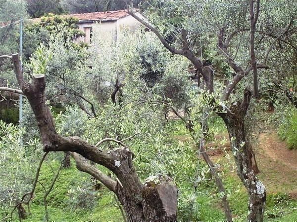 Rustico / Casale in vendita a Lerici, 5 locali, zona Zona: San Terenzo, prezzo € 600.000 | Cambio Casa.it