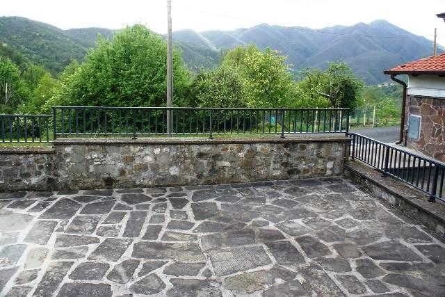 Appartamento in vendita a Tresana, 4 locali, zona Zona: Careggia, prezzo € 98.000 | Cambio Casa.it